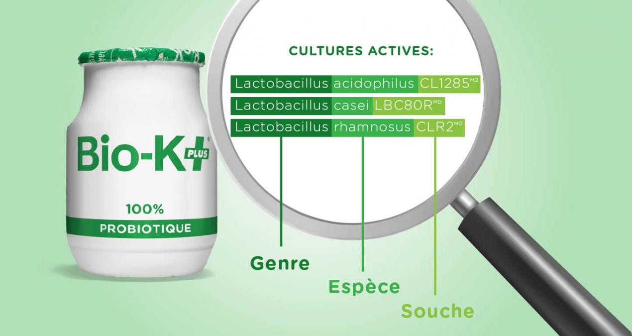 Tout savoir sur les probiotiques